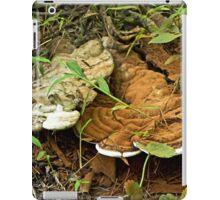 Turkey Tail Braacket Fungi With Spores iPad Case/Skin