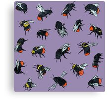 Red-Tailed Bumblebees Canvas Print