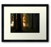 Dawn At McKercher Park Framed Print