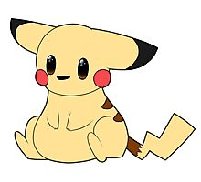 Pika Pi Photographic Print