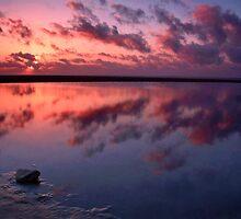 """The Colourful Silence"" by Bradley Shawn  Rabon"