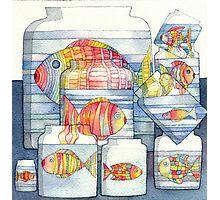 colorful fish Photographic Print