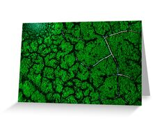 Green fracture Greeting Card