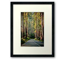 The Black Spur Framed Print
