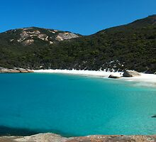 Little Beach Panorama, Two Peoples Bay by Charles Kosina