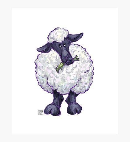 Animal Parade Sheep Silhouette Photographic Print