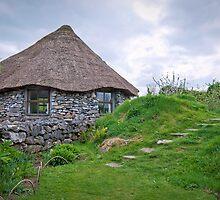 hobbit house.. by Michelle McMahon