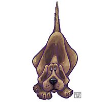 Animal Parade Hound Dog Silhouette Photographic Print