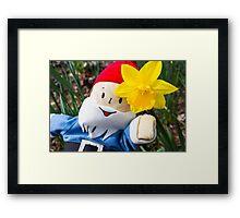 Daffodil Gus Framed Print