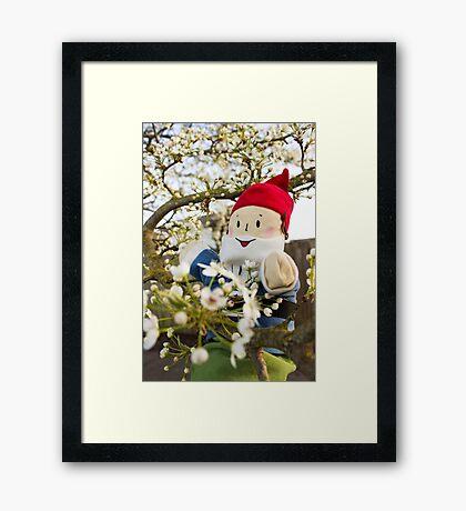 Spring Gus Framed Print