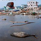 JAPAN  Earthquake, tsunami scars (1) by yoshiaki nagashima