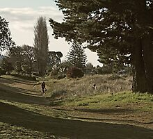 Walking path by Duncan Cunningham
