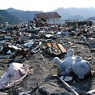 JAPAN  Earthquake, Tsunami scars (4) by yoshiaki nagashima