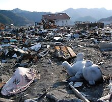 JAPAN  Earthquake, Tsunami scars (4) by yoshiaki nagashima