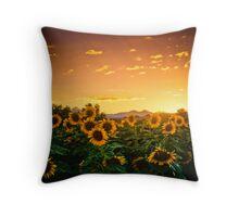 Heaven's Evening Throw Pillow