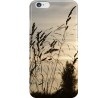 Sunset in countryside iPhone Case/Skin