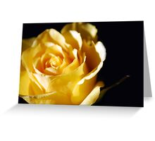 A light in dark times Greeting Card