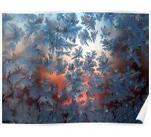 Frosty Window #7324 Poster