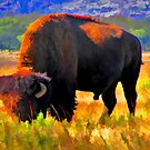Plains Bison by JohnDSmith