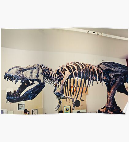 Whoa is that the rest of the T-Rex? Poster