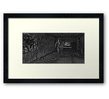The Lair Framed Print