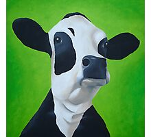 Cow green Photographic Print
