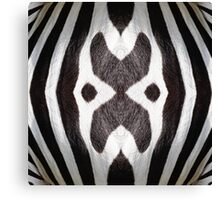 Zebra Texture Pattern made with Photography of a Zebra Canvas Print