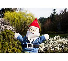 Landscape Gnome Photographic Print