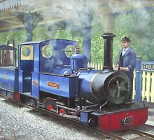exbury steam locomotive with driver by martyee