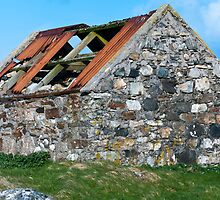 Building, Byre, Barn, Abandoned by Hugh McKean