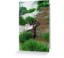 Top of the waterfall Greeting Card