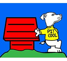 PIT COOL PIT BULL LOGO BY URB SUB Photographic Print