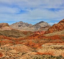 Red Valley  by Tammy  (Robison)Espino