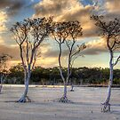 Sunset At Lake Poorrarecup # 2 by Eve Parry