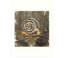 Fibonacci's snail  Art Print