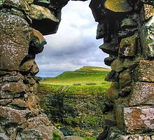 The View Dunluce Castle - Belfast  by Victoria limerick
