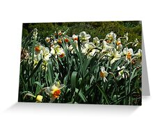 Great to see you again, how long has it been? A year? Greeting Card