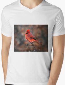 Cardinal in a Snowstorm Mens V-Neck T-Shirt
