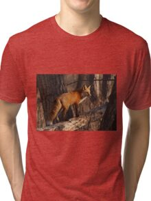 Fox hunt Tri-blend T-Shirt