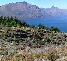 Queenstown Hill by PhotosByG