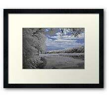 Wekiva River Framed Print