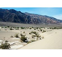 Sand Dunes of Death Valley Photographic Print