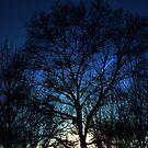 Winter Sunset by sensameleon