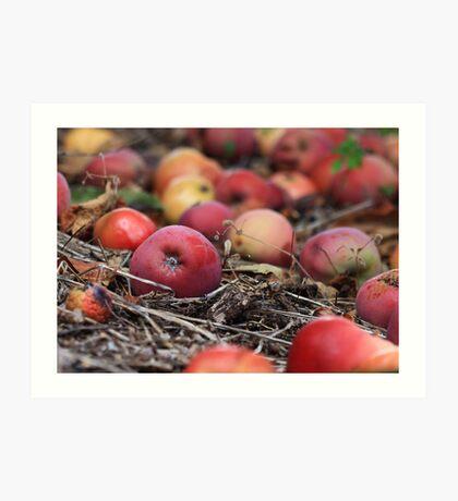 Under the Apple Tree Art Print