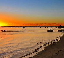 Bribie Island & The Glasshouse Mountains. Queensland, Australia. (3) by Ralph de Zilva