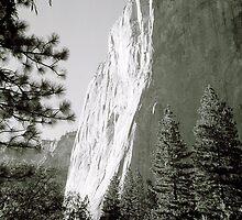 El Cap by SkoyaMoore