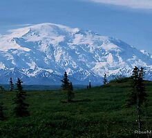 MT MCKINNLEY , ALASKA by RoseMarie747