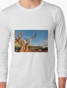 Desert scene Long Sleeve T-Shirt