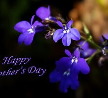 Sweet Lobelia - Mothers Day  by steppeland-2