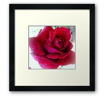 Sweet Sue Framed Print